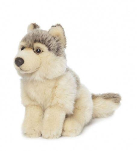 Großes Bild Wolf