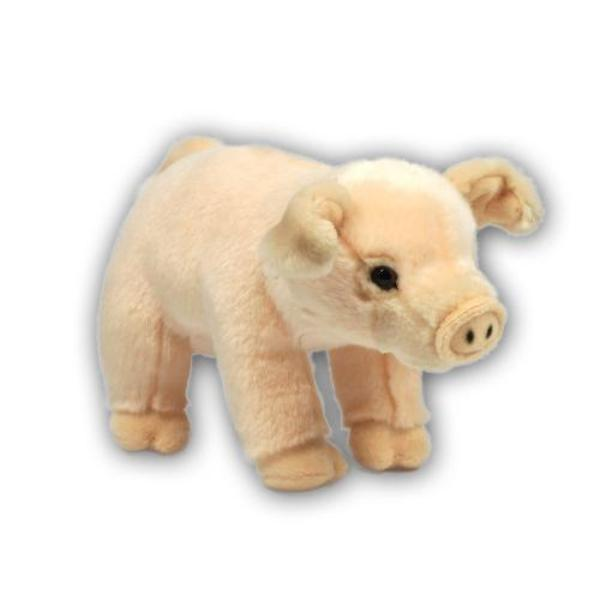 Großes Bild Schwein